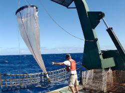 Convalidación FOL en un FP Técnico Superior en Navegación, Pesca y Transporte Marítimo